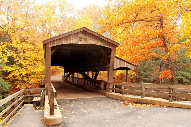 yellowbridge-fall